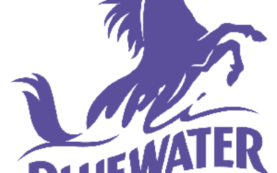 Blue Water Guest satisfaction Survey at www.bluewaterthoughts.com | Win $500